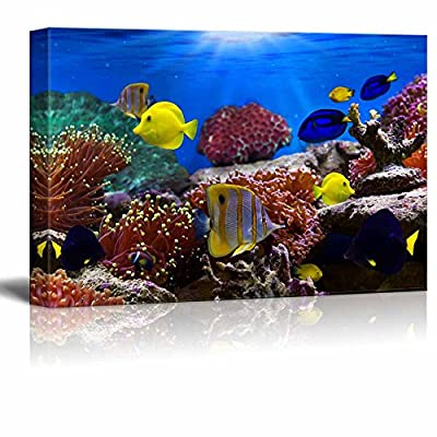 Canvas Wall Art - Coral Reef and Tropical Fish Under The Ocean | Modern Home Art Canvas Prints Gallery Wrap Giclee Printing & Ready to Hang - 12
