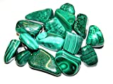 Zentron Crystal Collection: 1/2 Pound Natural Large Tumbled Green Malachite- Polished Authentic Wholesale Gemstones for Healing, Wicca, Reiki