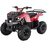 SmartDealsNow Powersports TAO Youth ATV Quad with Reverse. (Youth Size Utility Model ATV -125D) Choose Your Color.