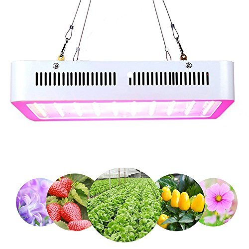 LED Grow Light 600W Full Spectrum Indoor Grow Lights For Medicinal Plants Veg & Flower in Greenhouse Tent Plant(Actual Power Consumption 100W) by VANDER LIFE