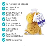 Natural Sea Sponges the Perfect Spa Gift Set by