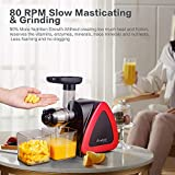 Aobosi Slow Masticating juicer Extractor, Cold