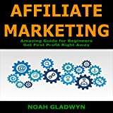 #10: Affiliate Marketing: Amazing Guide for Beginners - Get First Profit Right Away