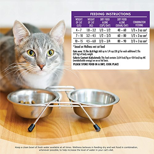 Wellness Complete Health Natural Dry Cat Food Hairball Control Chicken Recipe