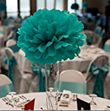 Furuix Mermaid Party Decorations/Under the Sea Party 16pcs Teal Lavender Purple 10inch 8inch Tissue Paper Pom Pom Paper Lanterns for Birthday Decor Baby Shower Decorations Frozen Party Supplies