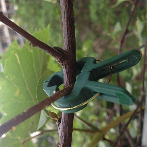 Robuste Kunststoff Garten Pflanze Blume Support Befestigungsclips gr/ün kingken 20/ S + L