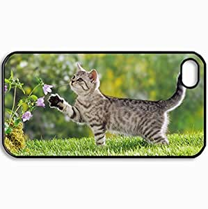 Personalized Protective Hardshell Back Hardcover For iPhone 4/4S, Cats Kitten On Walk 23654 Design In Black Case Color