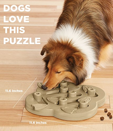 Outward Hound Nina Ottosson Dog Puzzle Toy Dog Game 4