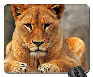 Lion Mouse Pad, Mousepad (Cats Mouse Pad)