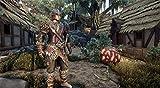 Elex: Collectors Edition - PlayStation 4
