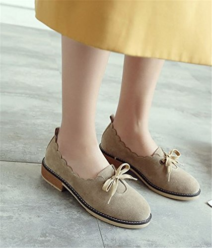 Toe for Walking Office Slip Low Believed Flats Pointy On Women Daily Shoes apricot Heel TP5UnnqHzw