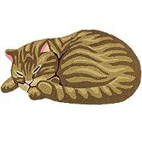 KEPSWET Cute Cat Cartoon Pattern Bathroom Area Rug Simple Brown Bedroom Rug Bedside Rug Living Room Rugs Washable Durable Door Mat Floor Mat (28x15, Cat)