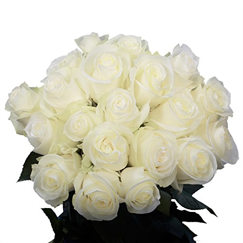 GlobalRose White Roses- Fresh Cut Flowers- 50 Stems for Delivery