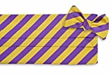High Cotton Men's Self Tie All American Stripe Cummerbund Set - Purple and Gold