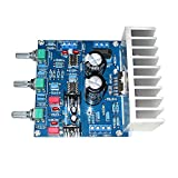 AOSHIKE TDA7265+NE5532 Audio Amplifier Board Hifi Dual Channel Amplifiers 25Wx2 DIY Sound System Speaker Home Theater