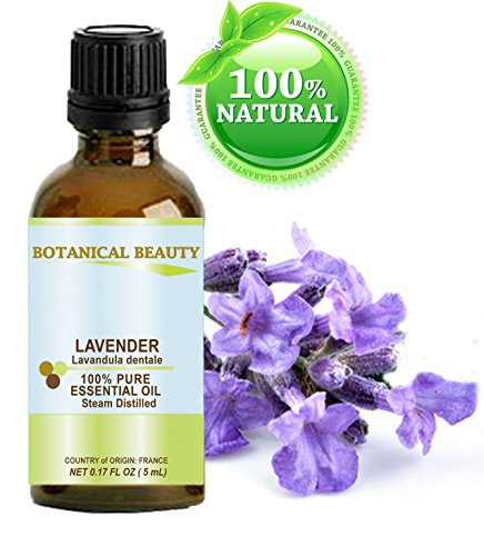Aceite esencial de lavanda francesa. 100% puro grado terapéutico, calidad Premium, sin diluir, vapor destilado. 0,17 Fl.oz. - 5 ml. por belleza botánica.