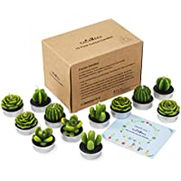 12 Piece COCOMOON Cactus Tealight Candle Holder