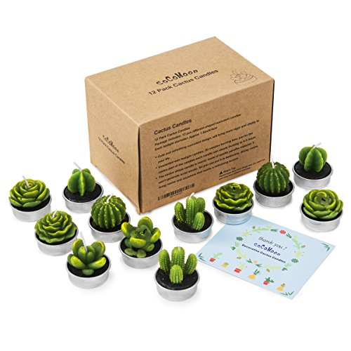 - COCOMOON Cactus Candles, Artificial Succulents Decorative Tea Light Candles 12 Pcs,Perfect for Birthday Wedding Party Home Decor