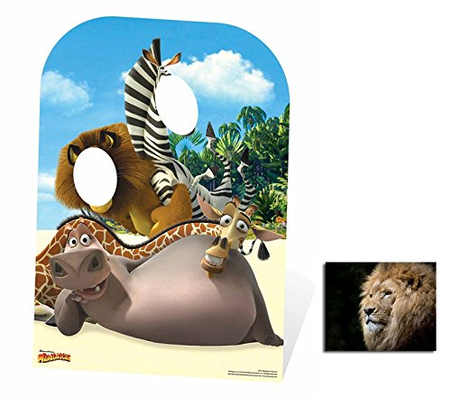 - Fan Pack - Madagascar Child Sized Stand-In Cardboard Cutout / Standee / Standup - Includes 8x10 Star Photo