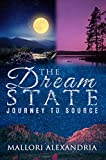 THE DREAM STATE: JOURNEY TO SOURCE.: T.D.S. BOOK SERIES BOOK ONE (THE DREAM STATE (T.D.S.) 1)