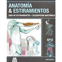Anatomía y estiramientos: Guía de estiramientos. Descripción anatómica