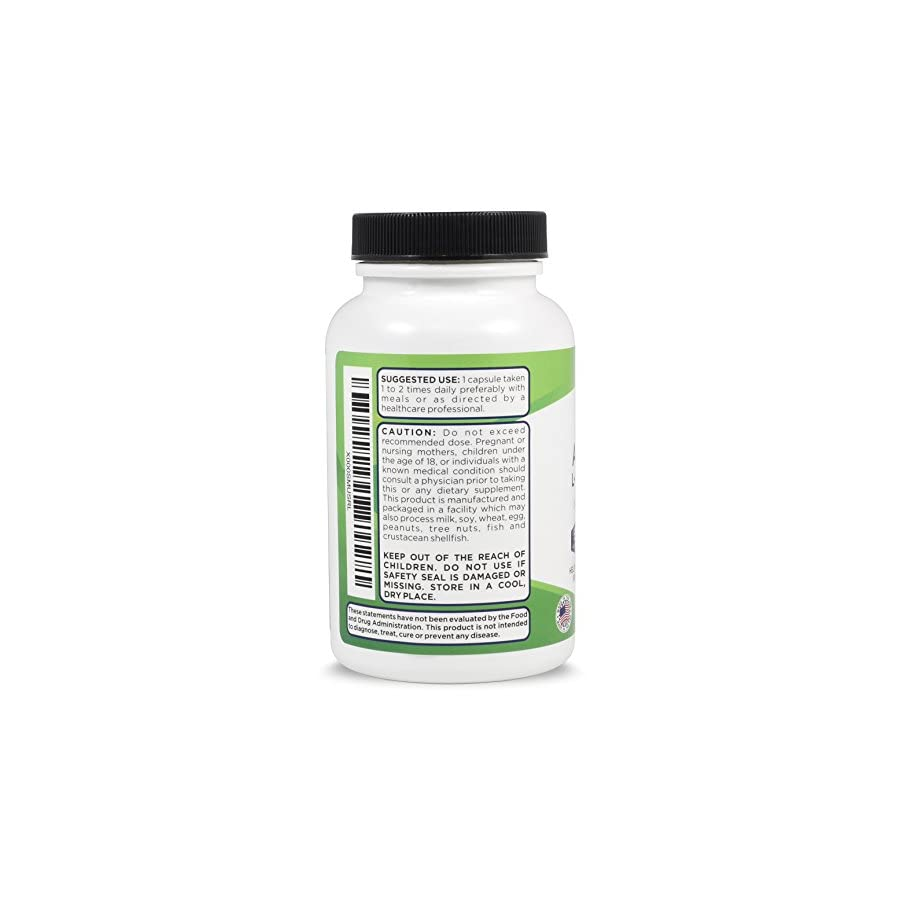 Acetyl L Carnitine With Alpha Lipoic Acid For Brain Health & Fat Loss 90 Capsules