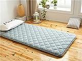 JJKB Student Cotton Bed Mat Tatami,Student Cotton Bed Mat Tatami,Foldable Mattress Thicken,Bamboo Charcoal Fiber Mattress Thickness 5 cm-a 120x200cm(47x79inch)