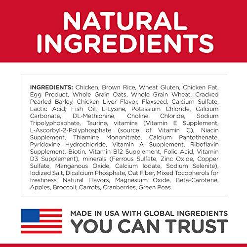 Hill's Science Diet Dry Cat Food, Kitten, Chicken Recipe 4