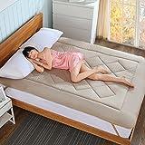 DHWJ WCCT Non-slip soft mattress,Full cotton padded tatami mattress,Single double bed mat-A 150x200cm(59x79inch)