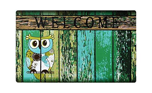 Welcome Doormat, Entrance Mat Floor Mat Rug for Indoor Outdoor Front Door with Non-Slip Rubber Backing, Printing Door Mat with Owl Pattern, 17WX29L (Owl)
