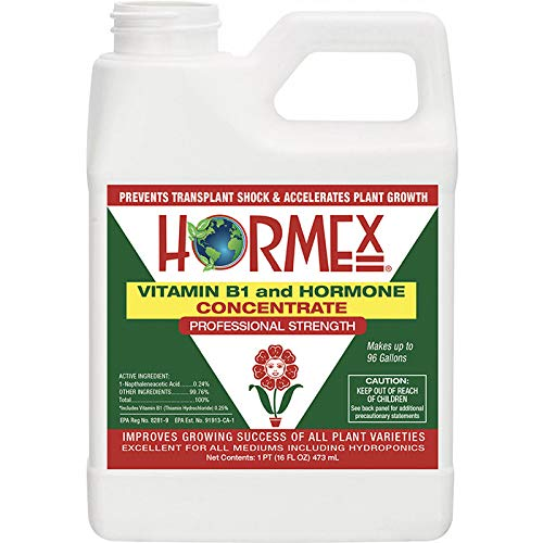 Hormex Vitamin B1 Rooting Hormone Concentrate | Prevents Transplant Shock | Accelerates Growth | Stimulates Roots | For All Plant Varieties and Grow Mediums Including Hydroponics (16 oz)