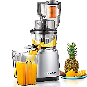 AMZCHEF Slow Juicer Slow Masticating Juicer Cold Press Juicer Vegetable&Fruit Extractor Juicer Machine Vertical Reverse…