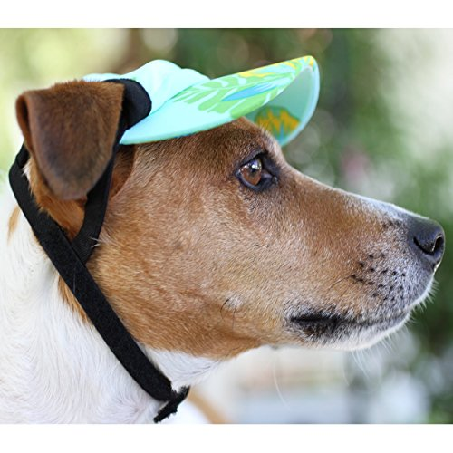 Playapup Sun Protective Dog Visors New Ebay