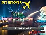 DIY Layover - Singapore (SIN)