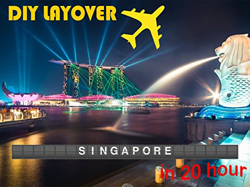 DIY Layover - Singapore (SIN)
