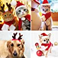 fast and good Cat Santa Christmas Hat + Muffler + Elk Antler Reindeer Hat, Head Wear Accesories Christmas Costume Outfits for Pet Dog Cat Rabbit(Pack of 3) from fast and good