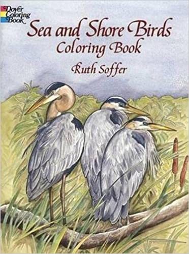 Sea And Shore Birds Coloring Book Dover Nature Ruth Soffer 9780486408057 Amazon Books