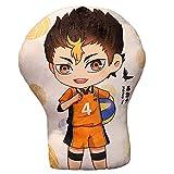 AMOLEY Pkiooi Anime Haikyuu!! Plush Pillow Decoration, Soft Throw Pillow for Sofa/Car/Bedroom, Haikyuu Gift for Fans 35cm(Yu Nishinoya)