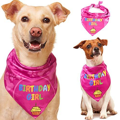 Odi Style Dog Bandana Girl for Dog Birthday - Dog Birthday Bandana for Small, Medium, Large Dogs, Bandana for Dogs Puppy Birthday Party, Happy Birthday Girl Dog Bandana, Pink -