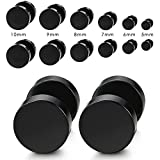 Dolland 6 Pairs 5-10mm Stainless Steel Black Screw Stud Earrings for Men Women Cheater Fake Ear Plugs Gauges Illusion Tunnel