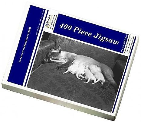 Puzzle de 400 piezas de gatos siameses de alimentación (BaW ...