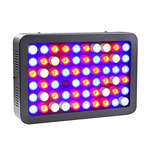 1000 Watt Led Light Fixture - 7