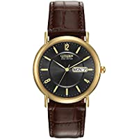 Citizen Eco Drive Stainless Steel Brown Leather Men's Watch