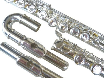 New Curved&Straight Head Silver Concert Band C flute w/Case.Approved+Warranty.