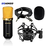 Aokeo AK-70 Professional Studio Broadcasting & Recording Condenser Microphone