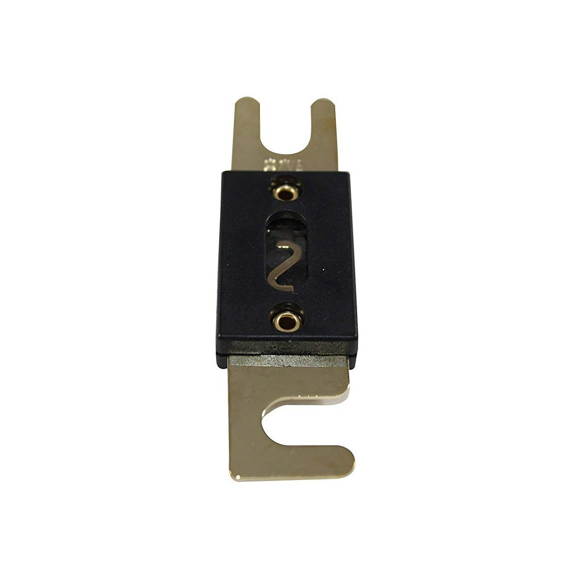 5Pcs//lot ANL Fuse 200 Amp Gold Plated ANL Fuse 200A