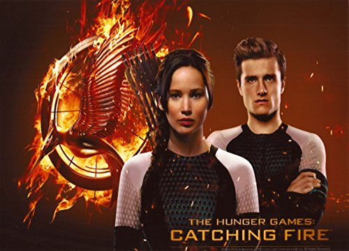 The Hunger Games Birthday Personalized Birthday Edible Frosting Image 1/4 sheet Cake Topper