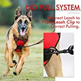 rabbitgoo Dog Harness, No-Pull Pet Harness with 2