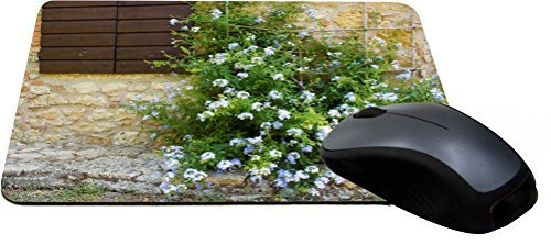 Rikki Knight Tuscan Window with Flowers Design Lightning Series Gaming Mouse Pad (MPSQ-RK-1133)