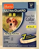 HARTZ Flea Collar for Small Dogs Waterproof 7 Months Protection Fits Necks Up to 20 Inches